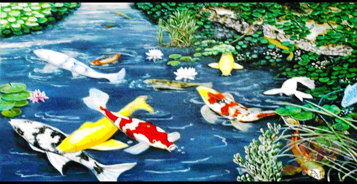 KOI FISH PONDColorful koi fishes swimming in a pond. They are a symbol of love and friendship.